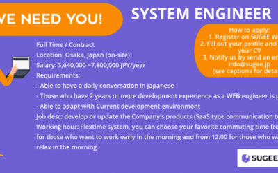 System Engineer / Programmer Needed!